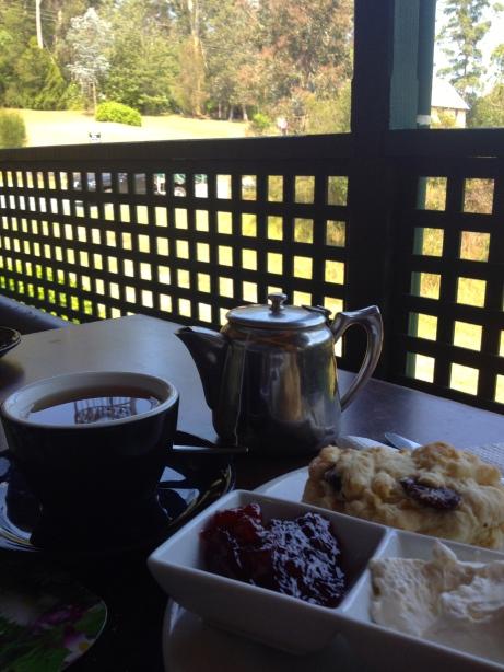 DT@@15 Cafe - Mogo#2