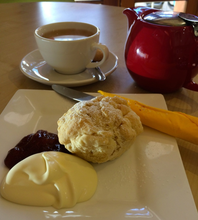 dtgarden-gallery-cafe-wodonga